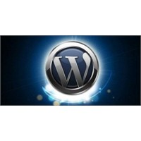 Wordpress Eklenti Güncelleme Sorunu