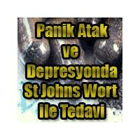 Sarı Kantaron`un Depresyon Ve Panik De Kullanımı