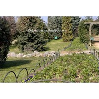 Gökdelenler Arasında Botanik Bahçesi