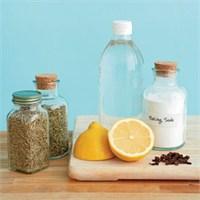 %100 Organik Bitkisel Temizlik Ürünleri