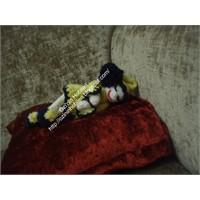 Uykucu Kokoş Bebek