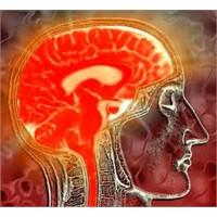 Meditasyon Ve Beyin