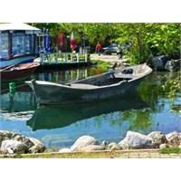 Sapanca Gölü - Kenarı-