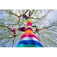 Sokak Sanatına Farklı Bir Bakış; Yarn Bombing!