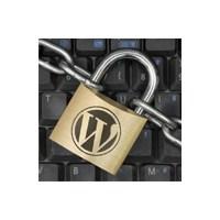 Wordpress Güvenliği Ve Açıklarını Kapatma
