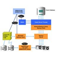 Oracle Veritabanı Mimarisi -1