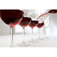 Chateau Phelan Segur- Dikey Şarap Tadımı 2009-2004