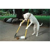 Köpeğinizin Pisliğini De Götürün