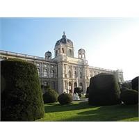 Viyana: Müzeler Ve Schnitzel = Figlmüller