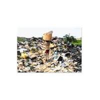 Çöplükte Yaşayan, Camdaki Yağmur Lekesini Diline