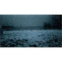 Yağmurun İntiharı