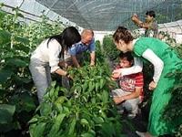 Mudurnu Organik Tarım Merkezi Olmayı Hedefliyor