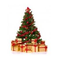 Noel Ağacı Nedir? Nereden Alınır?