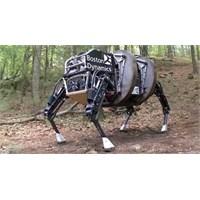 Google Boston Dynamics Robot Şirketini Satın Aldı