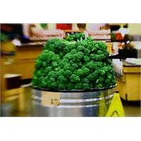 Brokolinin Süper Faydaları
