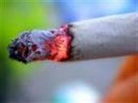 Sigara Öldürür Mü? Hadi Canım Sen De!…