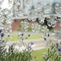 Plastik Şişede Gizlenmiş Çiçekler