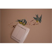Duvarımdaki Kuşlar