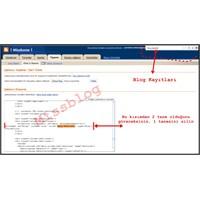 Bazı Bloglarda 2 Tane Olan 'Blog Kayıtları' Sorunu