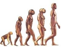 50 Maddede Evrim Teorisinin Çöküşü