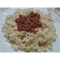 Fiyonk The Bolognese