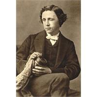 Gizli Bir Lewis Carroll Öyküsü: Peruklu Eşekarısı