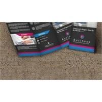 Profesyonel Tri-fold Broşür Tasarımları (Psd)