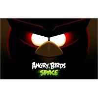 Angry Birds Uzayda