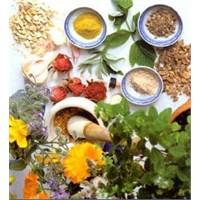 Kanserli Dokuları Güçlendiren Şifalı Bitkiler