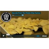 Patates Cipsi Nasıl Yapılıyor, Onu Biliyor Musunuz