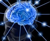 İlginç Beynimiz