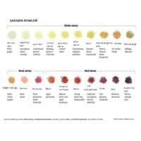 Şarabın Renklerini Keşfetmeye Var Mısınız?