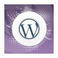 Wordpress'te Seo Yapmak