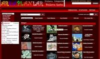 Arka Planlar Resim İndirme Sitesi