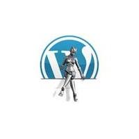 Wordpress.Com'da Kolay Web Sitesi Yapımı