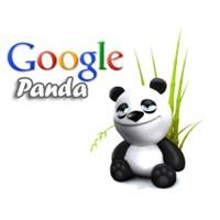 Google Panda'dan Sonra İşe Yarayan Seo Teknikleri