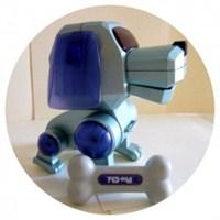 Aptal Robot Köpek!