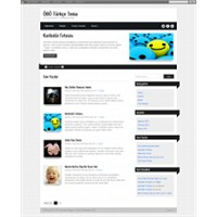Ribbons Türkçe Wordpress Teması
