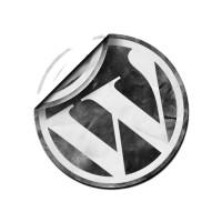 Wordpress 3.1.4 Dil Dosyası Hatası