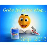 Grip 2013