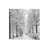 Bulgaristan Kar Görüntüleri