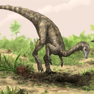 En eski dinozor türü keşfedildi