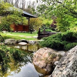Japon Bahçesi Parkı – Baltalimanı, Sarıyer