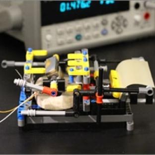 Nemden Elektrik Üretmek İçin Bakteri Kullanıldı