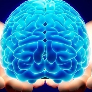 İnsan Beyninin İlginç ve Gizemli 10 Özelliği