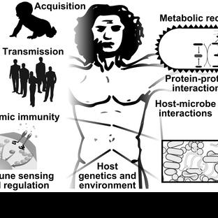 İnsan Mikrobiyom Projesi tam gaz