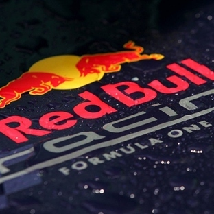 Red Bull Racing RB10'un Örtüsünü Kaldırdı