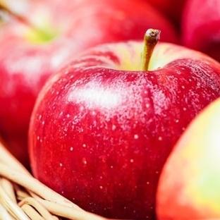 Sağlıklı Akciğerler İçin Faydalı 10 Besin