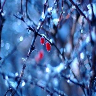 Aşklar'da Mevsimler Gibi!!