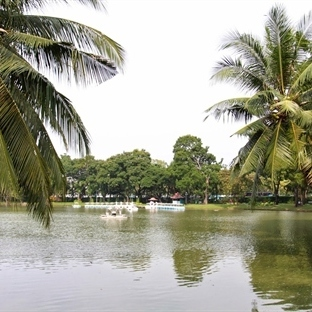 Bangkok - Lumphini Parkı